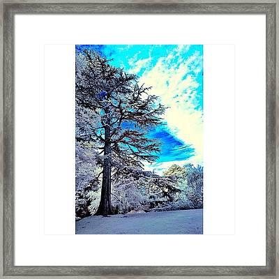 #travelingram #photographer Framed Print
