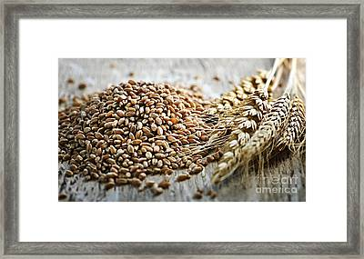 Wheat Ears And Grain Framed Print by Elena Elisseeva