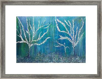 3 White Trees Framed Print by Dolores  Deal