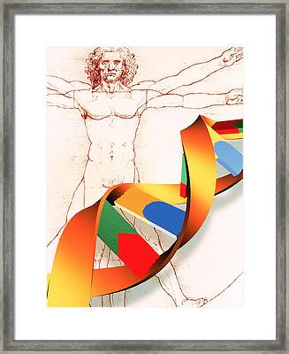 Dna Framed Print by Pasieka
