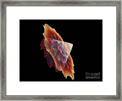 3d Snail Framed Print