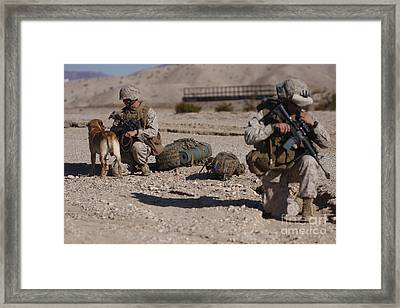 A Dog Handler And His Military Working Framed Print by Stocktrek Images