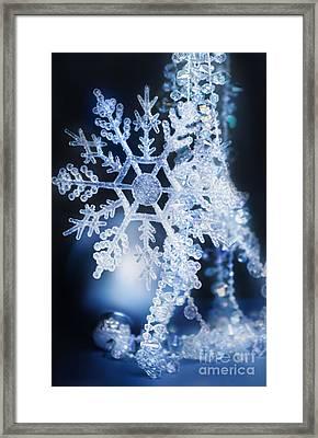 Christmas Ornaments Framed Print