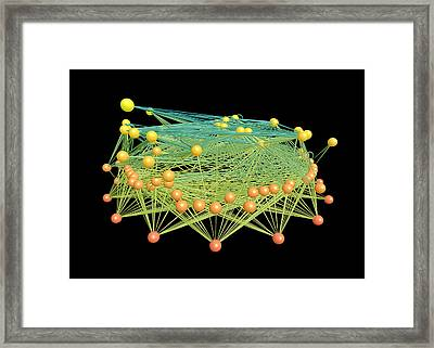 Ecological Food Web Framed Print by Neo Martinez