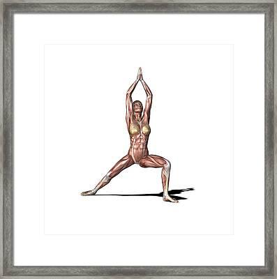 Female Muscles, Artwork Framed Print by Friedrich Saurer