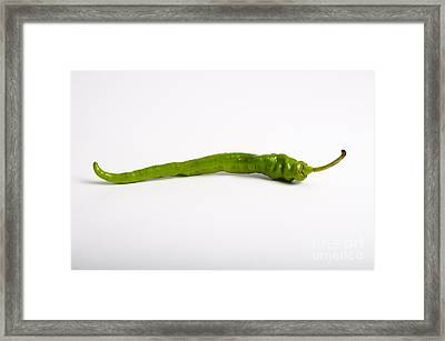 Green Chili Pepper Framed Print by Photo Researchers, Inc.