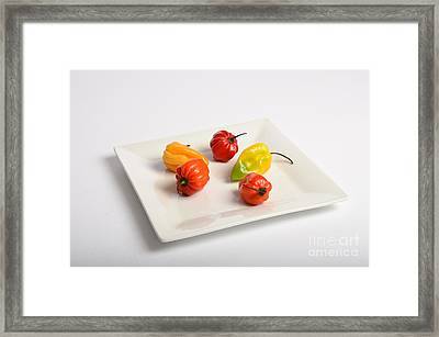 Habanero Chili Pepper Framed Print by Photo Researchers, Inc.