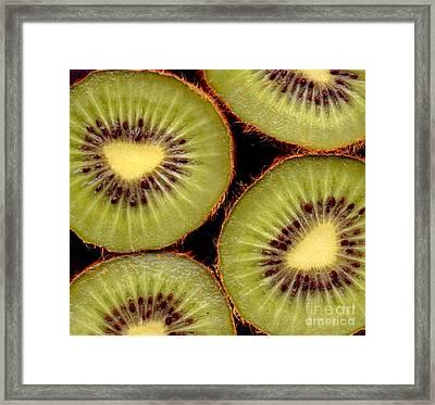 4 Kiwi Framed Print by Nancy Mueller