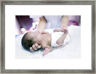 Nurse And Premature Baby Framed Print by