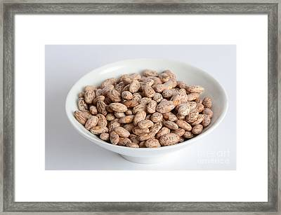Pinto Beans Framed Print by Photo Researchers, Inc.