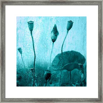 Poppy Art Image Framed Print by Falko Follert
