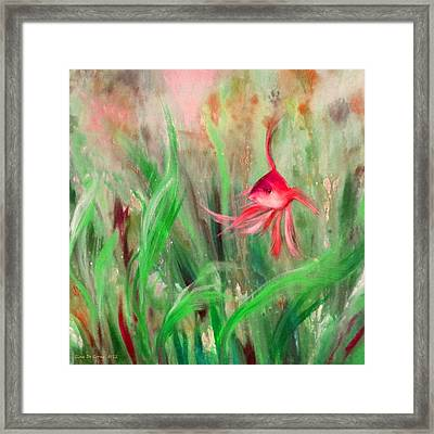 Red Fish Framed Print by Gina De Gorna