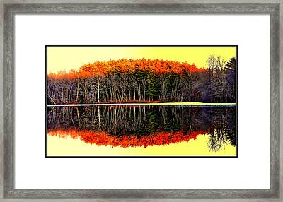 Reflections At Farrington Lake Framed Print by Aron Chervin
