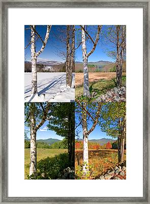 4 Seasons Chocurua Vertical Framed Print