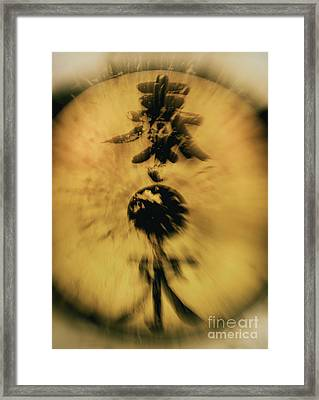 Untitled Framed Print by Glennis Siverson