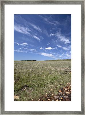 Alpine Tundra Framed Print by Ted Kinsman