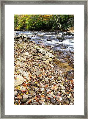 Autumn Cranberry River Framed Print