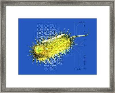 Bacterial Computing, Conceptual Artwork Framed Print by Victor Habbick Visions