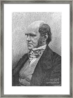 Charles Robert Darwin Framed Print by Granger
