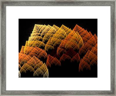Flowers Framed Print by Michele Caporaso