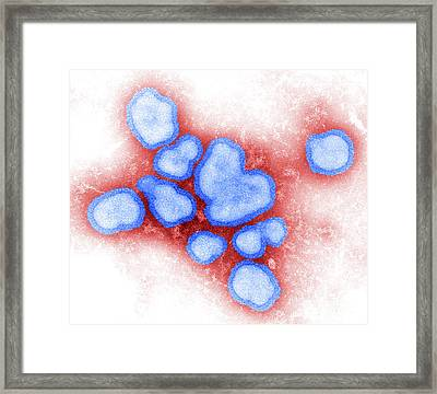Influenza A Virus Framed Print by Science Source