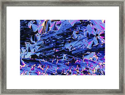 Liquid Crystalline Dna Framed Print by Michael W. Davidson