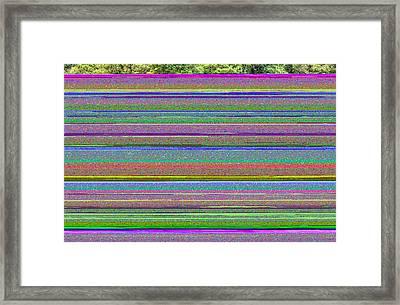 Mercury Framed Print by Elena Melnikova