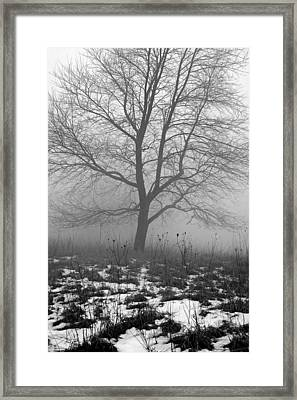 Tippecanoe County Indiana Framed Print by Marsha Williamson Mohr