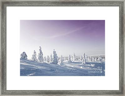 Winter Framed Print by Kati Molin