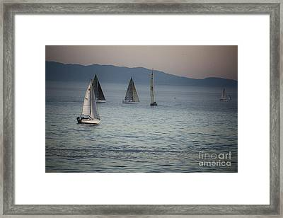 537 Cf Five Sailboats  Framed Print by Chris Berry