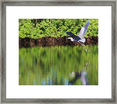 And I Think To Myself ...what A Wonderful World Framed Print
