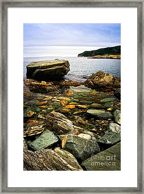 Atlantic Coast In Newfoundland Framed Print by Elena Elisseeva