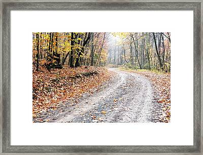 Autumn Monongahela National Forest Framed Print by Thomas R Fletcher