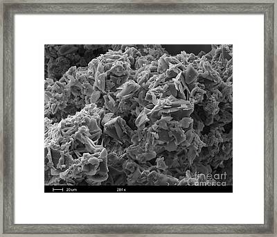 Crack Cocaine, Sem Framed Print by Ted Kinsman