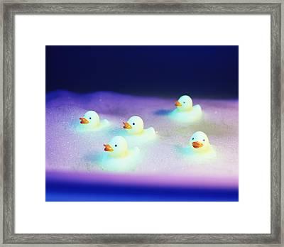 Rubber Ducks Framed Print