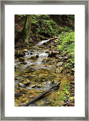 Rushing Mountain Stream Framed Print by Thomas R Fletcher