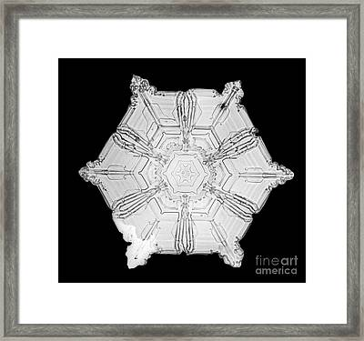 Snowflake Framed Print by Science Source