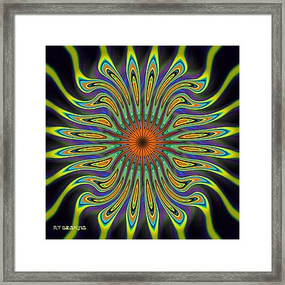 677 Framed Print by Rick Thiemke