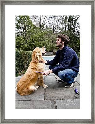Dog Grooming Framed Print