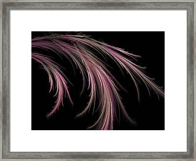 Grass Framed Print by Michele Caporaso