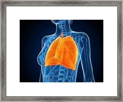 Healthy Lungs, Artwork Framed Print by Sciepro
