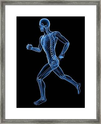 Running Skeleton, Artwork Framed Print by Sciepro