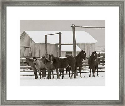 71 Ranch Framed Print