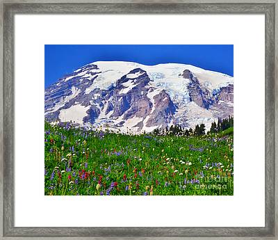 Framed Print featuring the photograph #73 Blooms At Paradise by Jack Moskovita