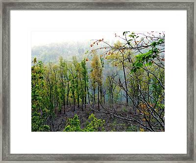 Splendors Of Himalayas Framed Print by Anand Swaroop Manchiraju