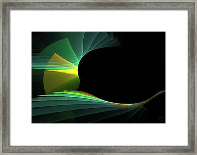 738 Framed Print by Lar Matre