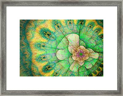 772 Framed Print by Lar Matre