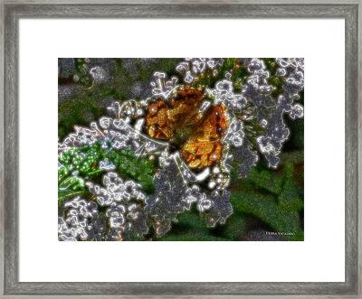 Butterfly Design Collection Framed Print by Debra     Vatalaro