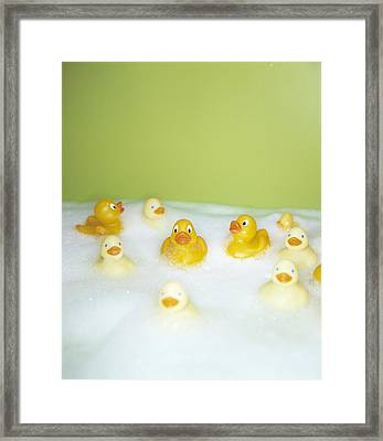 Rubber Ducks Framed Print by Lawrence Lawry