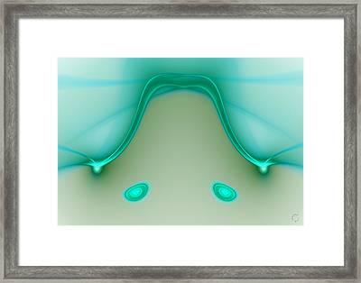 890 Framed Print